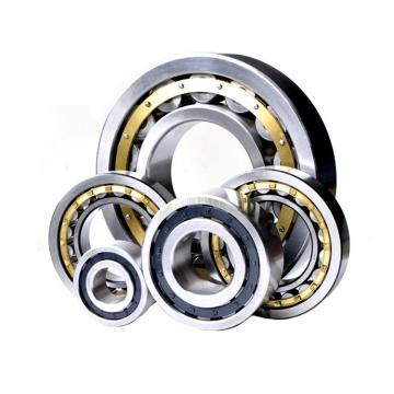 Toyana NUP203 E cylindrical roller bearings