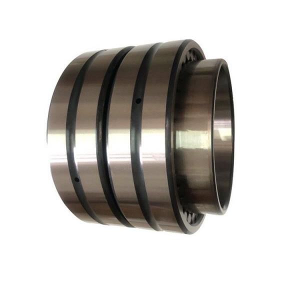 35 mm x 80 mm x 31 mm  NKE NU2307-E-MPA cylindrical roller bearings #1 image